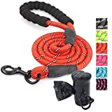 Ozpaw Dog Leash Long Reflective Lead for Small Medium and Large Dogs