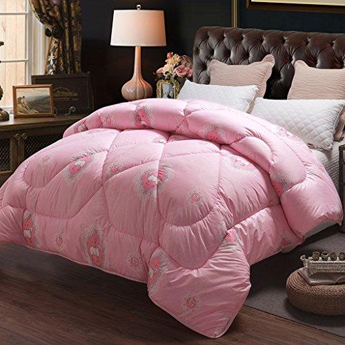 MMM Plus épais garder une écharpe chaude hiver doux double coton printemps et automne étudiant dormant coin edredon (taille : 150 * 200cm(2.5kg))