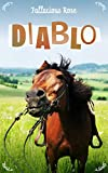 Diablo book cover. A brown horse in a field.