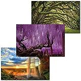 GREAT ART 3er Set XXL Poster – Mystische Natur –