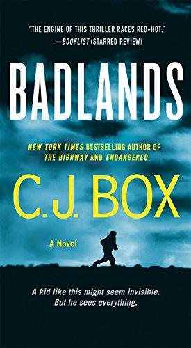 Badlands: A Novel (Cody Hoyt / Cassie Dewell Novels, 3)