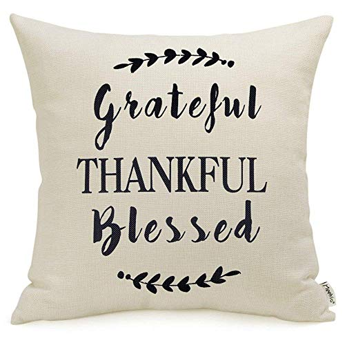 Meekio Farmhouse Throw Pillow Covers with Grateful Thankful Blessed Quotes 18' x 18' Farmhouse Rustic Décor Thank You Gifts
