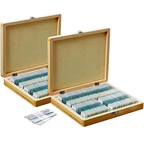 AmScope PS200A Prepared Microscope Slide Set for Basic Biological Science Education, 200 Slides, Set A, Includes Fitted Wooden Case
