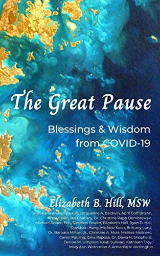 The Great Pause: Blessings & Wisdom from COVID-19 (English Edition)