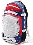 FORVERT Ice Louis Rucksack/Backpack - Multi
