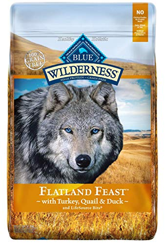 Blue Buffalo Wilderness Flatland Feast High Protein, Natural Adult Dry Dog Food with Turkey, Quail & Duck 22-lb