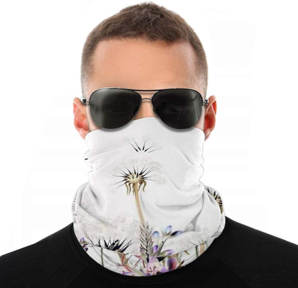 Headbands For Men Women Neck Gaiter, Face Mask, Headband, Scarf Botanical Vector Illustration Dandelions Lavender Turban Multi Scarf Double Sided Print Hair Wraps For Sport Outdoor