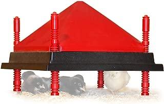 RentACoop Chick Heating Plate Kit - Warms 20 Chicks - 22 Watts (12