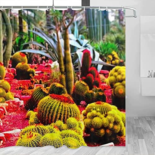 Spain Palm Groves Elche Cortina de ducha Viaje Decoración de baño Set con ganchos Poliéster 72x72inch (YL-05395)