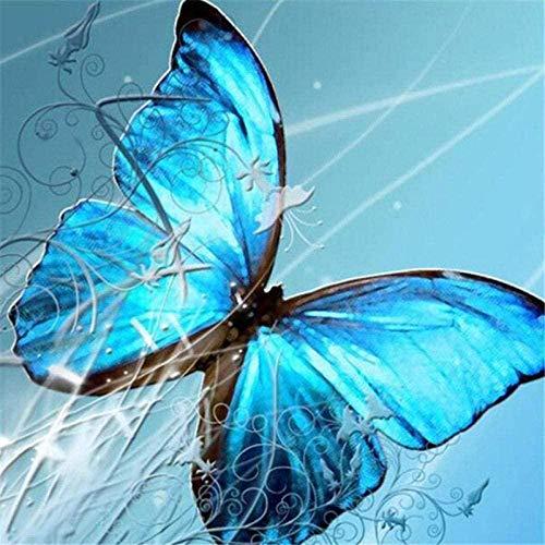DUANGONGZI Pintar por Numeros para Pintada a Mano de Pintura al Mariposa Abstracta Los Mejores Regalos para Amantes, niños y Madres.-40X50CM-No Frame