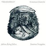 Transparent (feat. Dorotea Dragodan & Adrian Åsling Sellius)