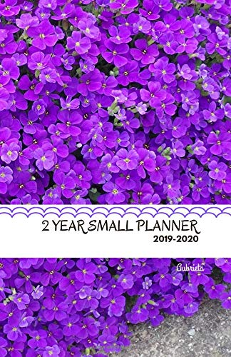 Two Year Small Planner 2019-2020 Aubrieta: Two-page spread monthly organizer for the next two years