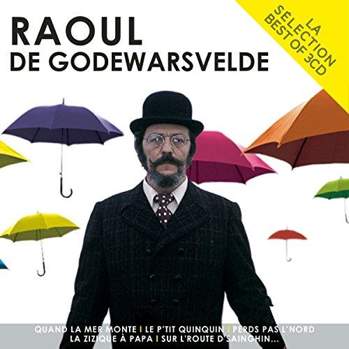 La Sélection Raoul de Godewarsvelde