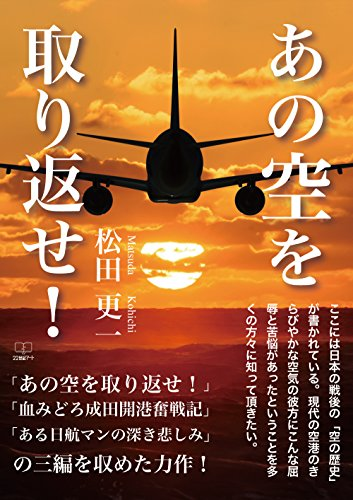 Take back that sky: One air traffic controller walked after the war (22nd CENTURY ART) (Japanese Edition)