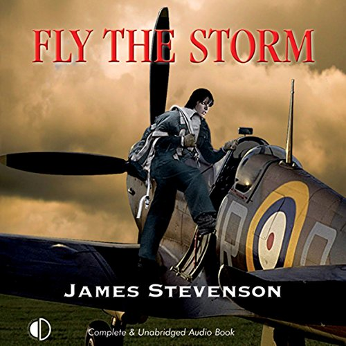 Fly The Storm audiobook cover art