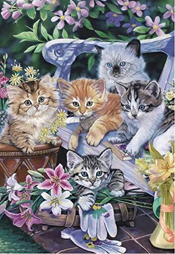 lcyab 1000 Piece Jigsaw Puzzles Erwachsene Beiläufig Stressabbauer Fünf Katzen auf einem Korbstuhl Kinder Cartoons Klassisches Hölzern Herausforderung Knobelspiel Geschenk