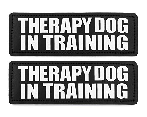 Industrial Puppy Therapy Dog in Training Patch with Hook Back and Reflective Lettering - Therapy Dog in Training Tag Patches for Therapy Dog Vest