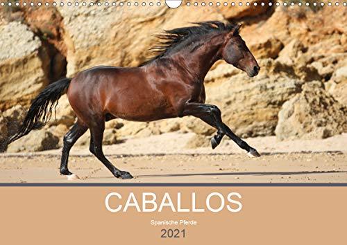 Caballos Spanische Pferde 2021 (Wandkalender 2021 DIN A3 quer)