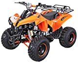 Kinder Quad S-10 125 cc Motor Miniquad 125 ccm orange Warrior