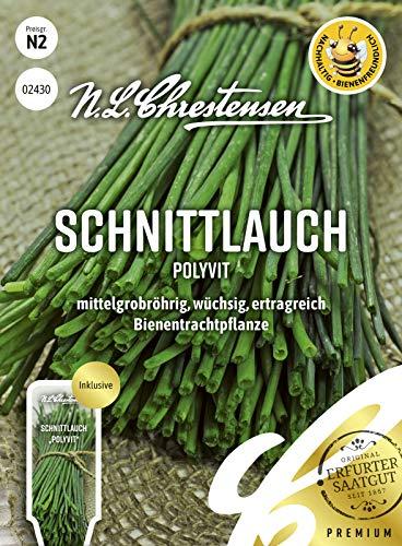 Schnittlauch Polyvit Samen, Saatgut