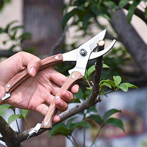 BUGUI Bypass Garden Pruning Shears - Premium SK-5 Steel Blade, Professional Garden Shears, Sharp Garden Scissors for Cutting Live Flowers, Trimming Plants, Light Branches, 8'