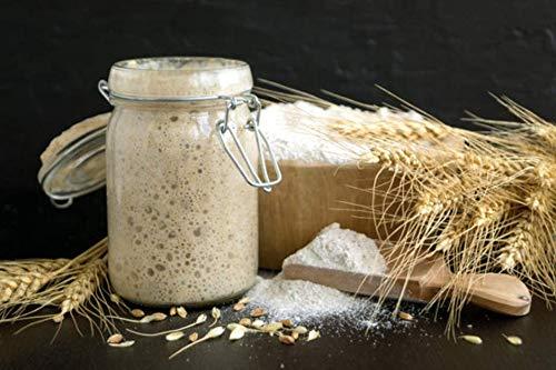 Sauerteig FRISCH Roggen Vollkornmehl Anstellgut! Natursauerteig – knuspriges Brot (Roggen)