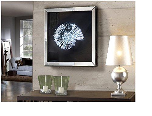 Schuller - Cuadros Decorativos - Espejo Fosil