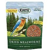 Dried Mealworms 14.28 oz. Tub