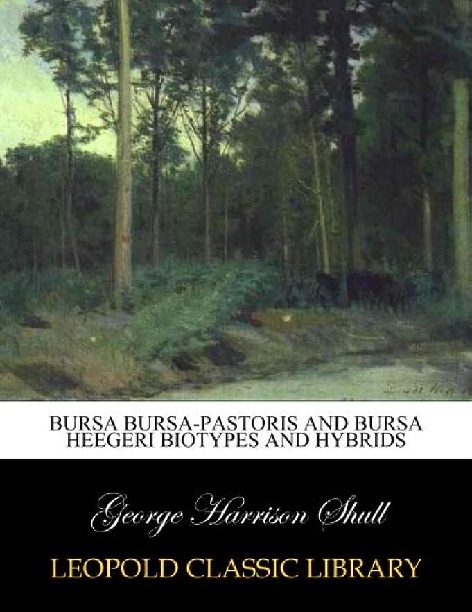 操作可能白い骨髄Bursa bursa-pastoris and bursa heegeri biotypes and hybrids