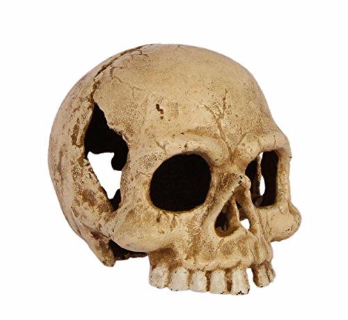 Moritz® Calavera Pisapapeles Hierro Fundido Decoración Peso Esqueleto Cráneo Crema de blanco Moritz
