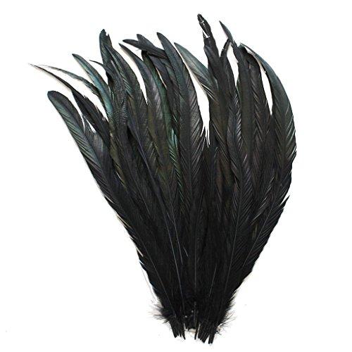 ERGEOB Echte Hahnenfedern in 30-35cm (12-14 Zoll) Länge - Ideal für Faching/Karneval, Kostüme, Hüte, Basteln, Zuhause Dekoration, DIY, Schwarz 20 Stück