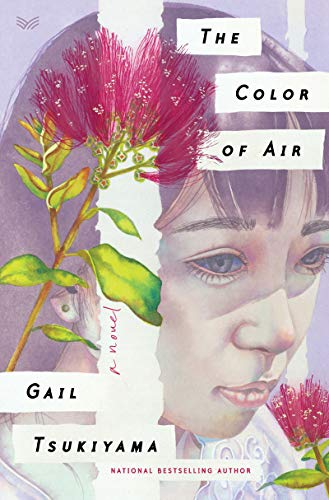 The Color of Air: A Novel