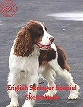 English Springer Spaniel Sketchbook: Blank Paper for Drawing, Doodling or Sketching 100 Large Blank Pages (8.5