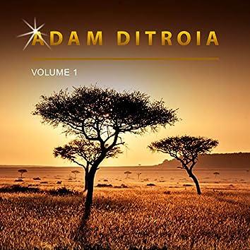 Adam Ditroia, Vol. 1
