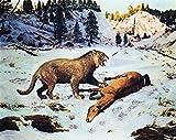 Lsping Puzzle Bambini maschio 500 pezzi Panthera fossilis Animal Animales Antiguos 52x38cm