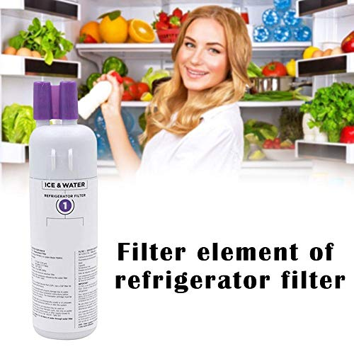 1 Pack 9081 Fit Kenmore 469081 Replacement Refrigerator Water Filter 46-9930