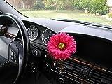 AutoVase Car Vase (Red Daisy)