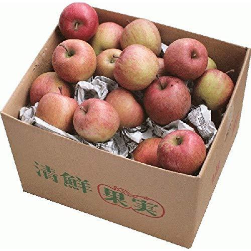 りんご 訳ありサンりんご10kg