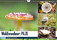 Waldbewohner: PILZE (Wandkalender 2022 DIN A4 quer): Detailaufnahmen von verschiedenen Pilzarten (Monatskalender, 14 Seiten )