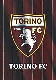 TORINO FC: Taccuino di calcio I Taccuino Torino