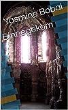 Binnegekom (Afrikaans Edition)