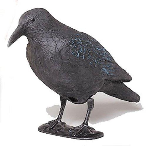 Star 140519 Corbeau Noir 38 cm avec barreau et Pieds en Plastique
