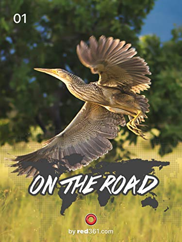 On the road: Roraima