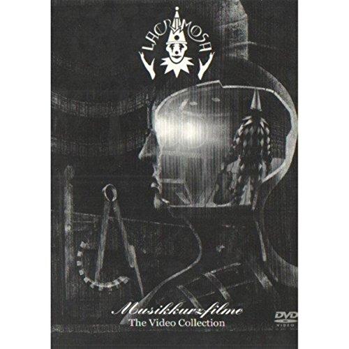Muskkurfilme [DVD]