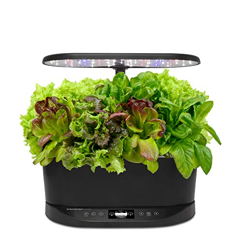 A smart garden for the gal who kills every plant