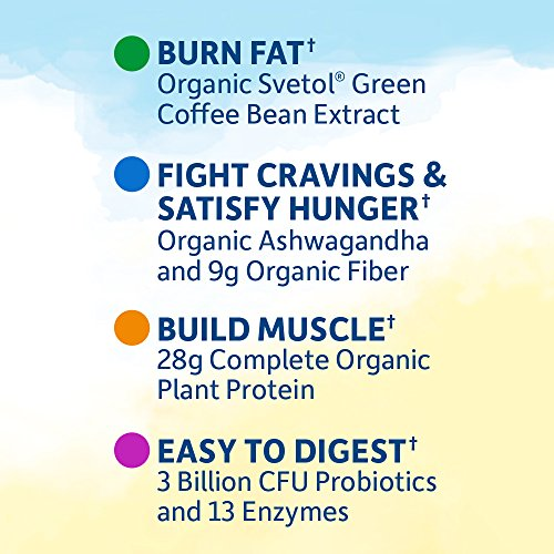 Garden of Life Raw Organic Fit Powder, Vanilla - High Protein for Weight Loss (28g) plus Fiber, Probiotics