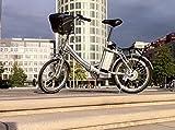 Movena AFH20 Der Klassiker Elektrofahrrad 20 Zoll Pedelec Faltrad Klapprad E-Bike, Farbe Silber: 36 V 15 AH 540 Wh AKKU
