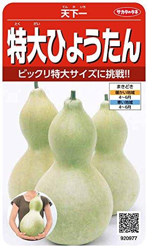 サカタのタネ 実咲野菜0977 特大ひょうたん 天下一 00920977