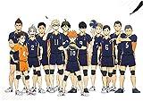 Zhenzhiao Haikyuu Haikyuu Manga Anime Poster Rolle Haus