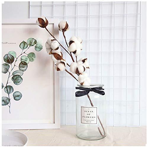 Shenye 21 Zoll künstlicher Blumenfüller Blumendekor natürliche Baumwollzweig getrocknete Blume künstliche Kapok natürlich getrocknete Baumwollstämme Bauernhausstil Dekoblumen Kunstblumen (Weiß)